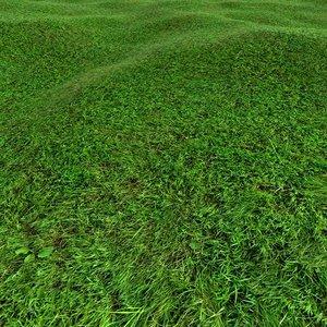 Grass Texture 2048x2048 FREE