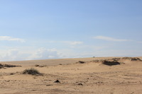 Dunes 9 (JB HI REZ)