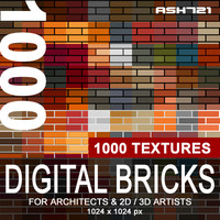 1000 Digital bricks