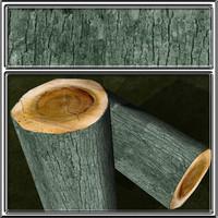 bark8.jpg