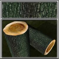 bark4.jpg