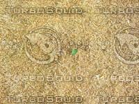 Lawn Carpet cz4 053
