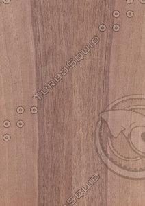 European Walnut Veneer Texture