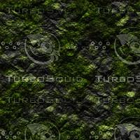 mossyrock.jpg