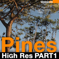 Pines High Res Part 1