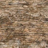 rotten-wood-02.jpg