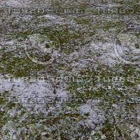Snow texture (grass)