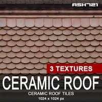 Ceramic roof tiles 13