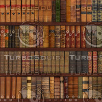 87 Leather Books On Shelves