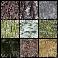 9 seamless bark textures