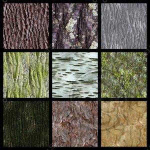 9 seamless bark textures