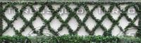 Garden Wall, Tiles X