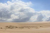 Dunes 15 (JB HI REZ)