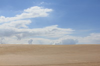 Dunes 8 (JB HI REZ)