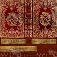 Red and Gold Book Texture