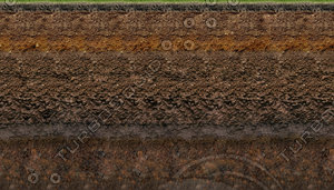 GRASS SOIL LAYERS