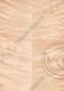 "Bird""s Eye Maple Veneer Texture"