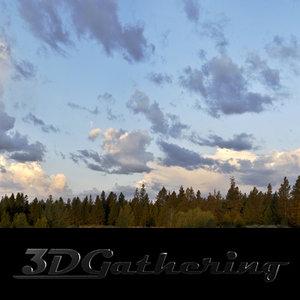 Morning sky and pine tree horizon 001