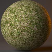 Grass001.mxm