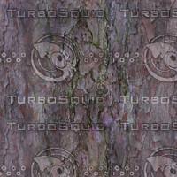 Pine Bark Seamless Texture