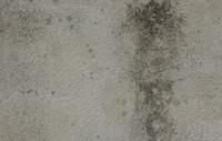 Grey grunge wall texture