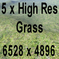 High res Grass Volume 2