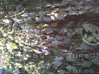 PICT0805