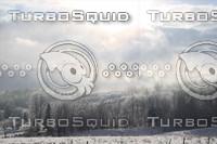 SPX_WinterLandscape001