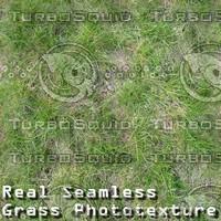 Grass texture # 7