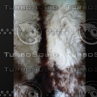 fur (03)