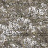 Grass and rocks texture