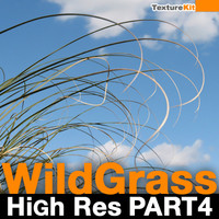 Wild Grass High Res Part 4