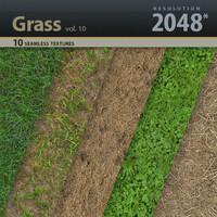 Grass Textures vol.10