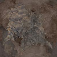 leather_hides_huge(1)