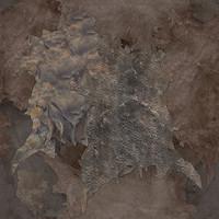 leather_hides_medium(1)