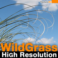 Wild Grass High Resolution Collection