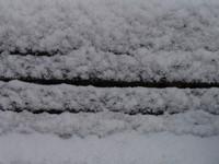 icesno_00027