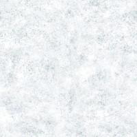 Snow Texture 1