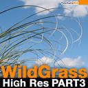 Wild Grass High Res Part 3