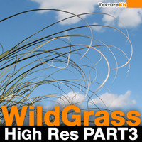 Wild Grass High Res Part 3