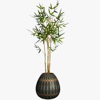 TX Bamboo94