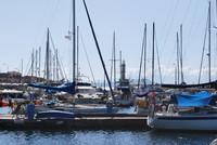 Harbor_0004