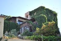 Building_Crete_0001