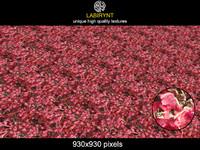 RedVolcanicPlants