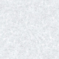 Snow Texture 7