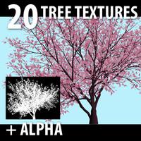 20 TREE Textures