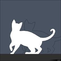 2D Cat 00295se
