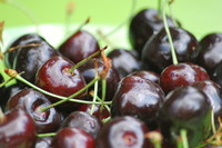 Fruit_Cherry_0001