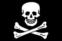 Jolly Roger texture Flag