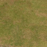 T-Grass 2010 Pack1